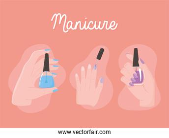 manicure, female hands holds nails polish different color