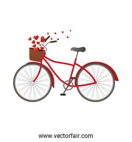 Love bike with hearts isolated vector design