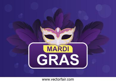 mardi gras mask with feathers vector design