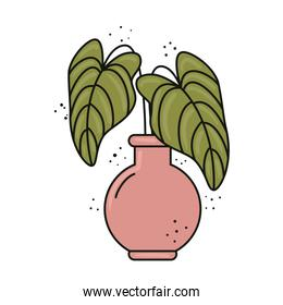 green tropical leafs plant in ceramic vase