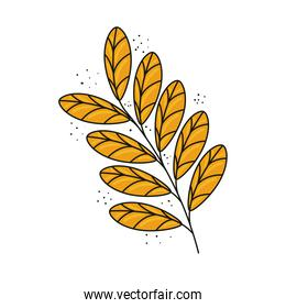 tropical exotic branch with yellow leafs nature icon