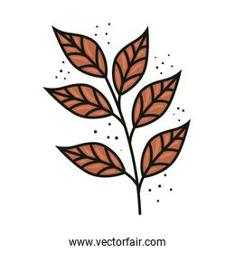 tropical exotic branch with orange leafs nature icon