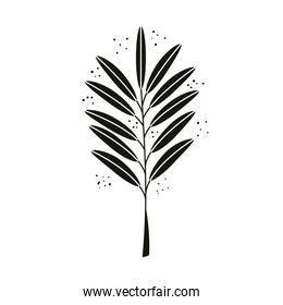 tropical branch with leafs nature isolated icon