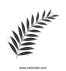 exotic branch with leafs nature isolated icon