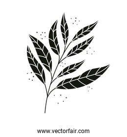 tropical exotic branch with black leafs nature icon