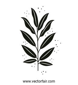tropical branch with black leafs nature icon