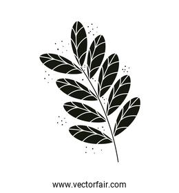 branch with black leafs plant nature icon