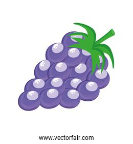 grapes delicious fresh fruit nature icon