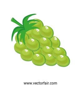 green grapes delicious fresh fruit nature icon