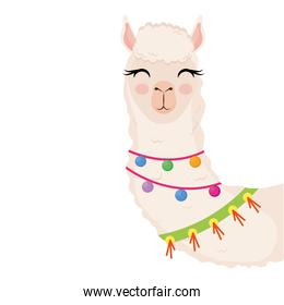 cute alpaca exotic animal with necklaces character