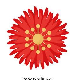 red and yellow flower garden plant decoration icon