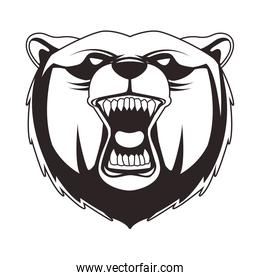 grizzly bear animal wild head character icon