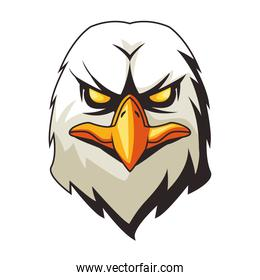 eagle animal wild head colorful character icon