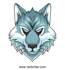 wolf animal wild head colorful character icon