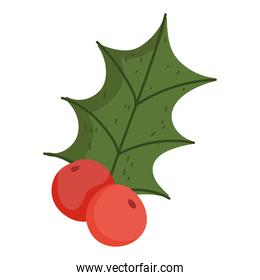 winter christmas holly berry decoration nature icon