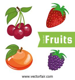 bundle of four fresh fruits set icons and lettering