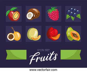 bundle of eight fresh fruits set icons and lettering