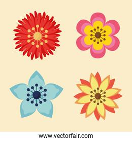 flowers garden plants decoration icons