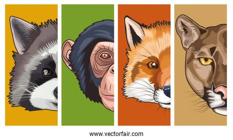 bundle of four animals heads characters