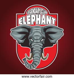elephant animal wild head character emblem