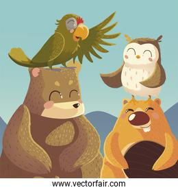 cartoon animals bear parrot beaver and owl wildlife