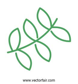organic natural, branch tree leaves green line style