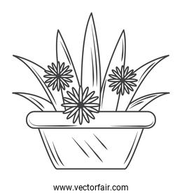 potted plant and flowers gardening, sketch style design vector