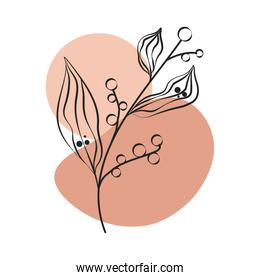 branch fruits plant leaves foliage nature line art with colored spot