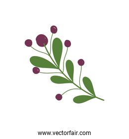 branch leaves berries nature cartoon icon in isolated style