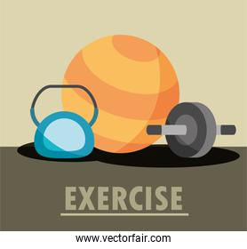 gym exercise kettlebell wheel abs and yoga ball equipment in flat style