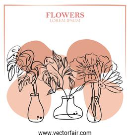 flowers leaves tropical palm foliage in vases, line spot color