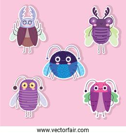 funny bugs animals cartoon stickers style icons