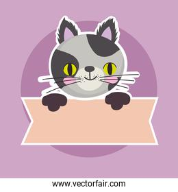 cute spotted cat feline animal with banner, pet cartoon