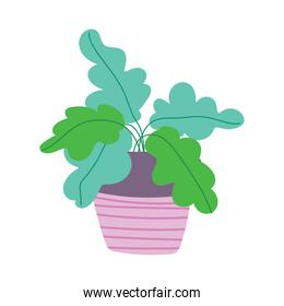 potted plant blossom cartoon flat isolated style