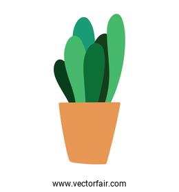 potted plant decoration cartoon flat isolated style