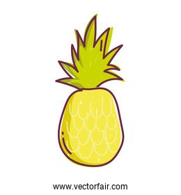 pineapple tropical fruit fresh food, line and fill icon
