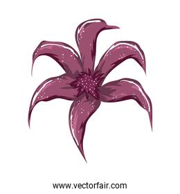 flower decoration floral painting isolated design