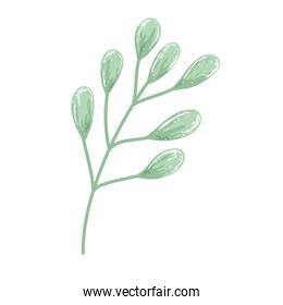 branch foliage leaves nature decoration painting isolated design