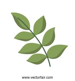 foliage branch leaves cartoon icon isolated style