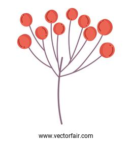 branch berries nature cartoon icon isolated style