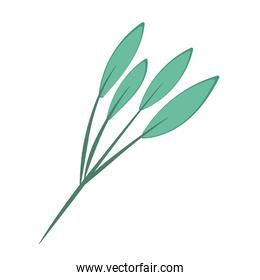 branch foliage leaves nature decoration cartoon icon isolated style