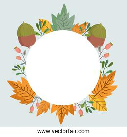 leaves acorns foliage nature botanical, decoration round frame