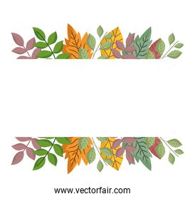 leaves foliage nature vegetation, banner design