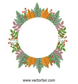 leaves branch berries foliage nature, circle frame