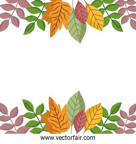 leaves foliage branch nature border white background