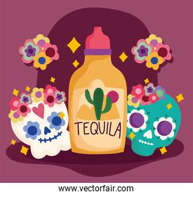 mexico day of the dead skull tequila flowers decoration culture traditional