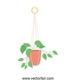 beautiful Plant in hanging pot icon, colorful design