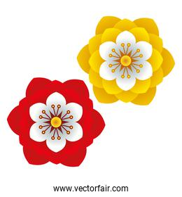 flowers and leafs red and yellow colors decorative icon