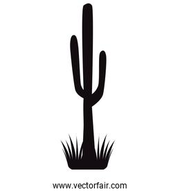 cactus plant with grass silhouette