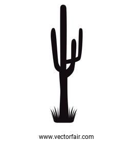 cactus plant with grass silhouette icon